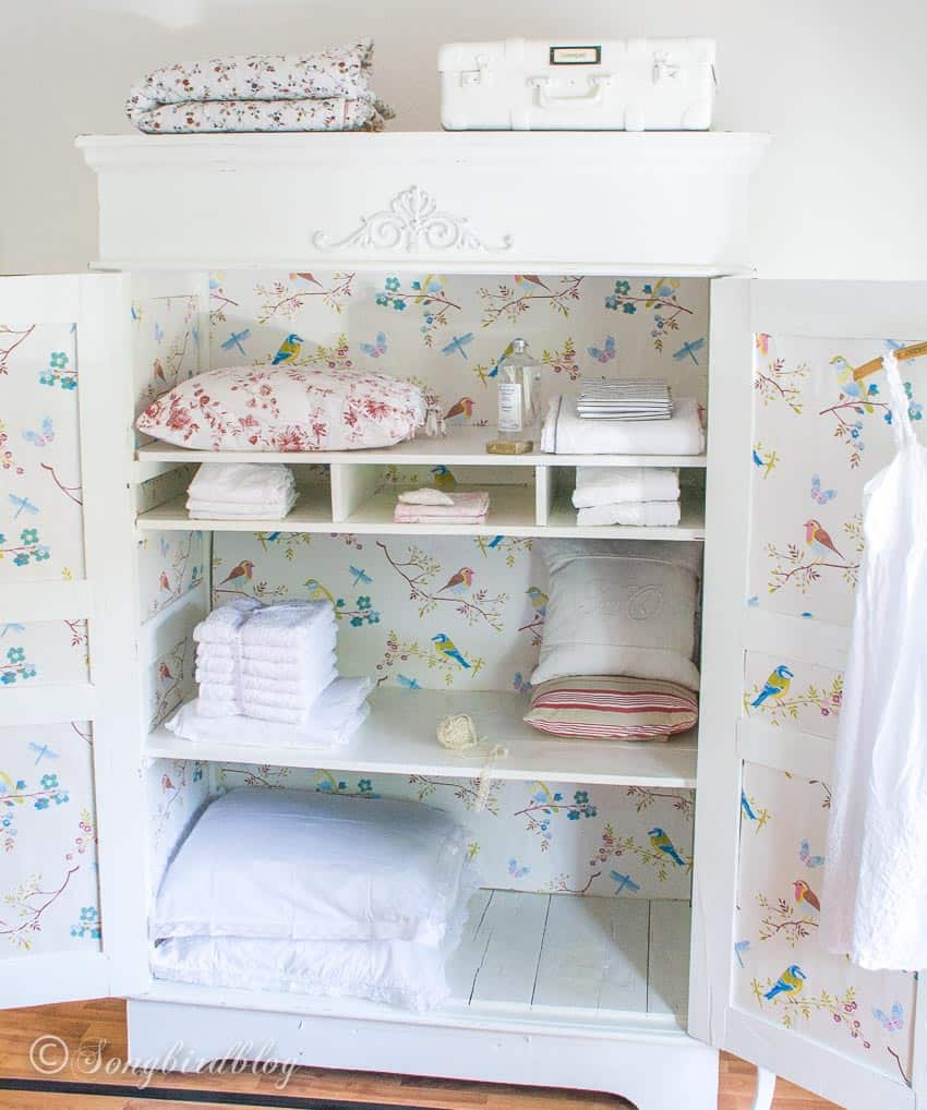 open wardrobe with wallpaper inside