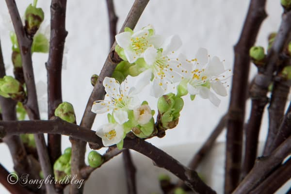 Apple Blossom Spring Decoration