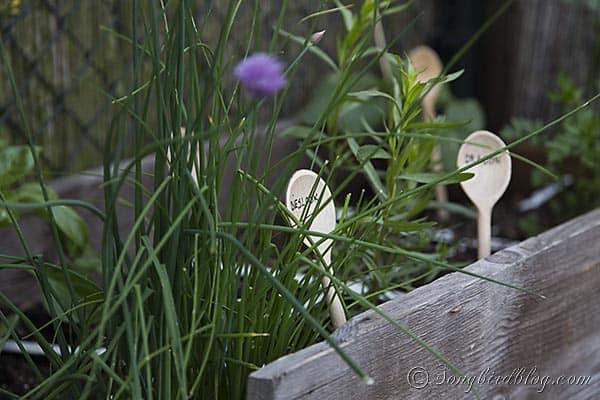 wooden spoons garden markers herbs via Songbirdblog